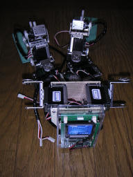 Golem-1.5 back view