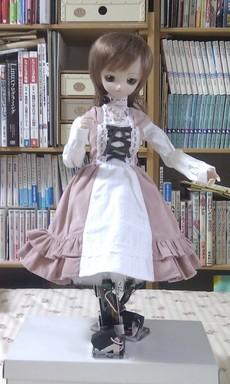 茉莉花(2011/10/17)